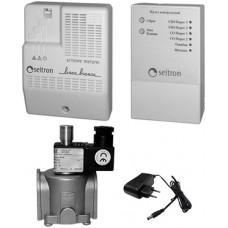 RGD-CH4+CO-DN15 Бытовой комплект на природный и угарный газы